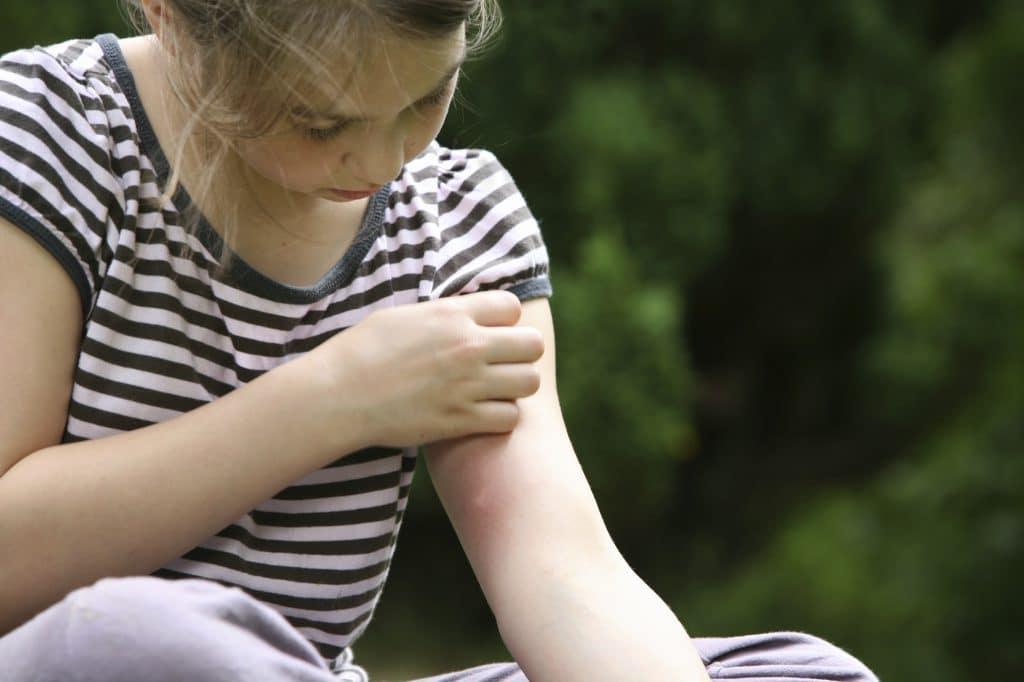 mersin sivrisinek ilaçlama